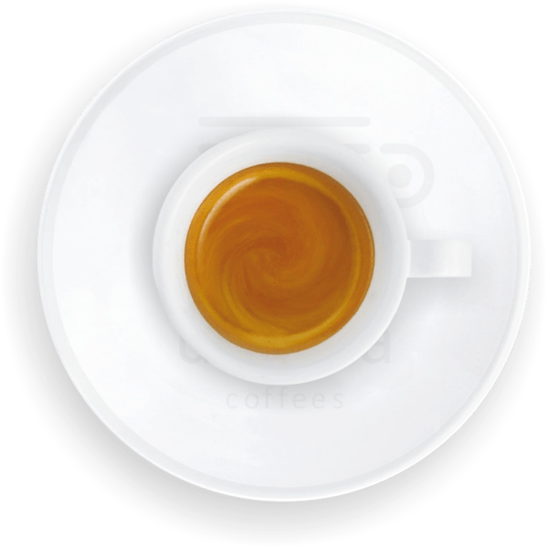utopia cup